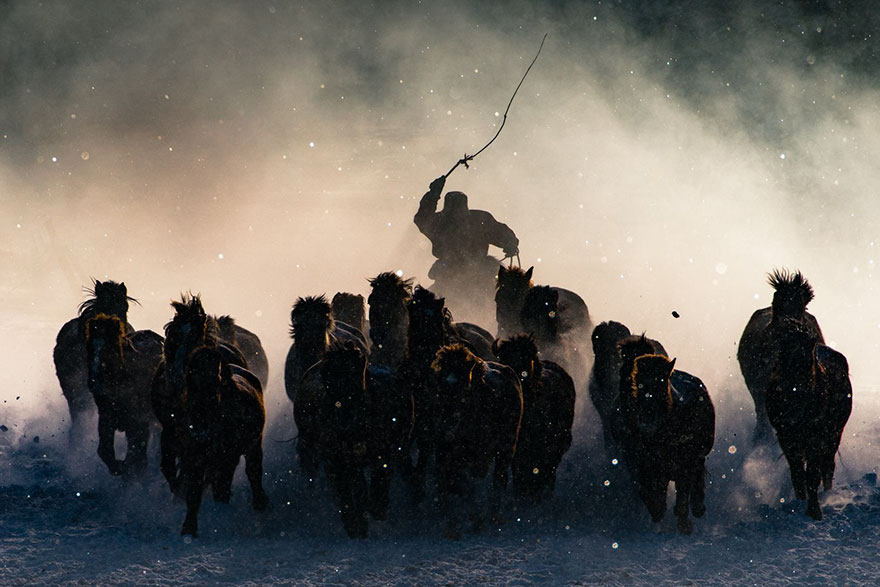 animum-fotos-ganadoras-national-geographic